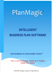service provider business plan