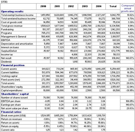 Non Profit Financial Summary