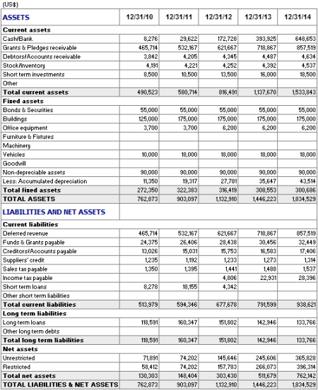 Non Profit Financial Statement Sample http://planmagic.com/business_plan/non-profit/non-profit-screenshots.html