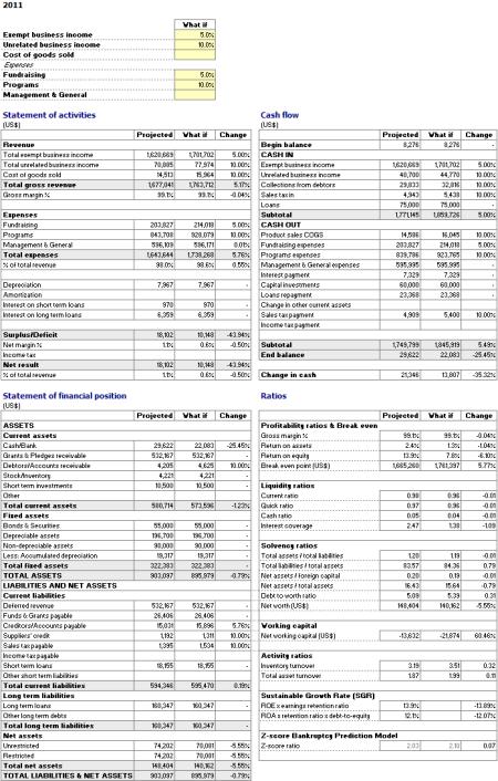 Non Profit What-If Analysis